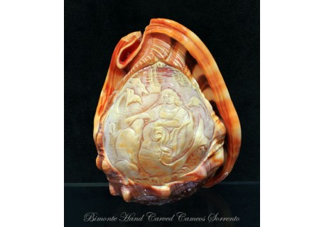"""Galatea"" Cameo Shell"