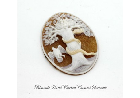 """""""Protection of the Family"""" Cameo"""